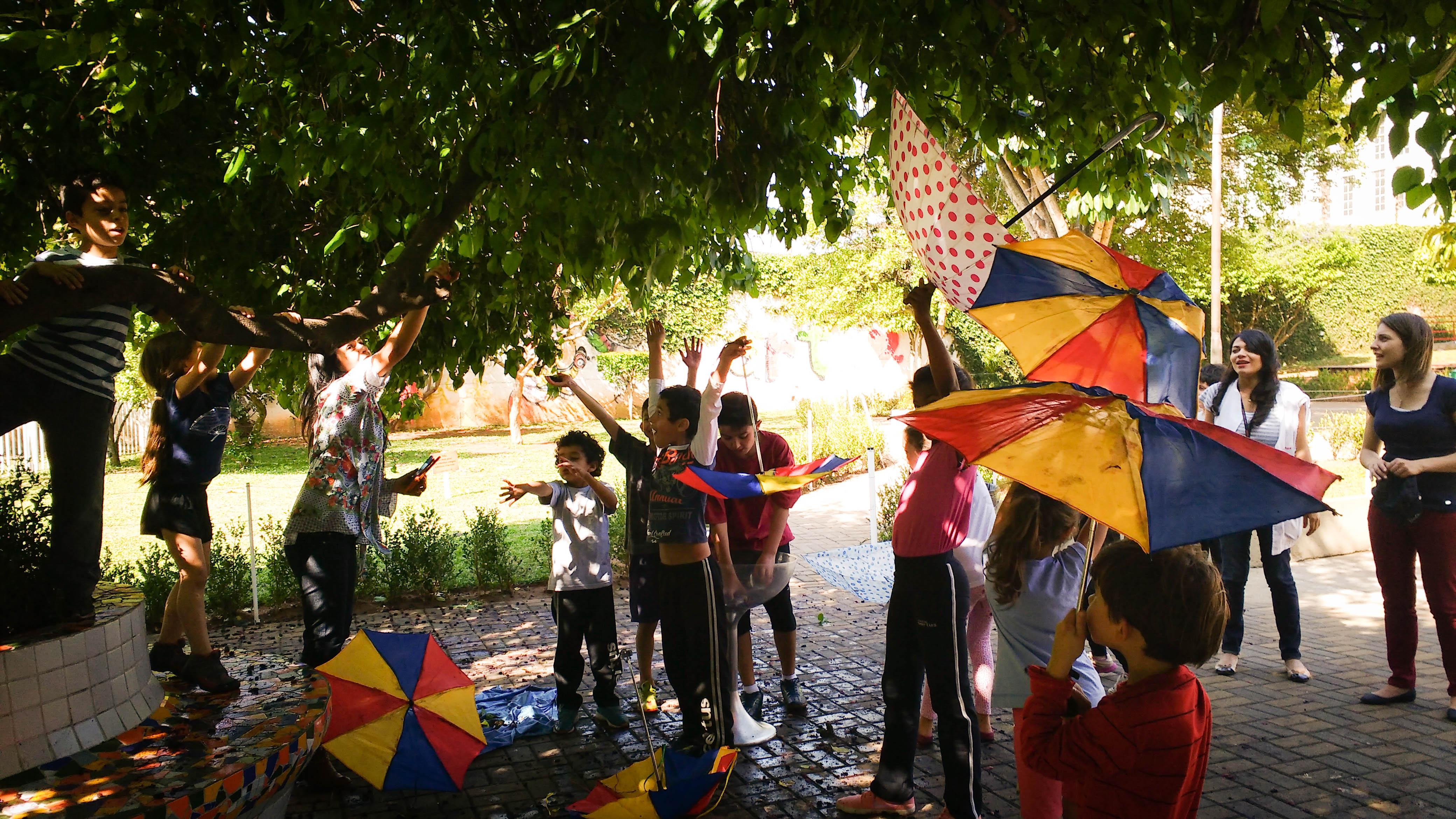 Crianças colhem amoras durante a chuva