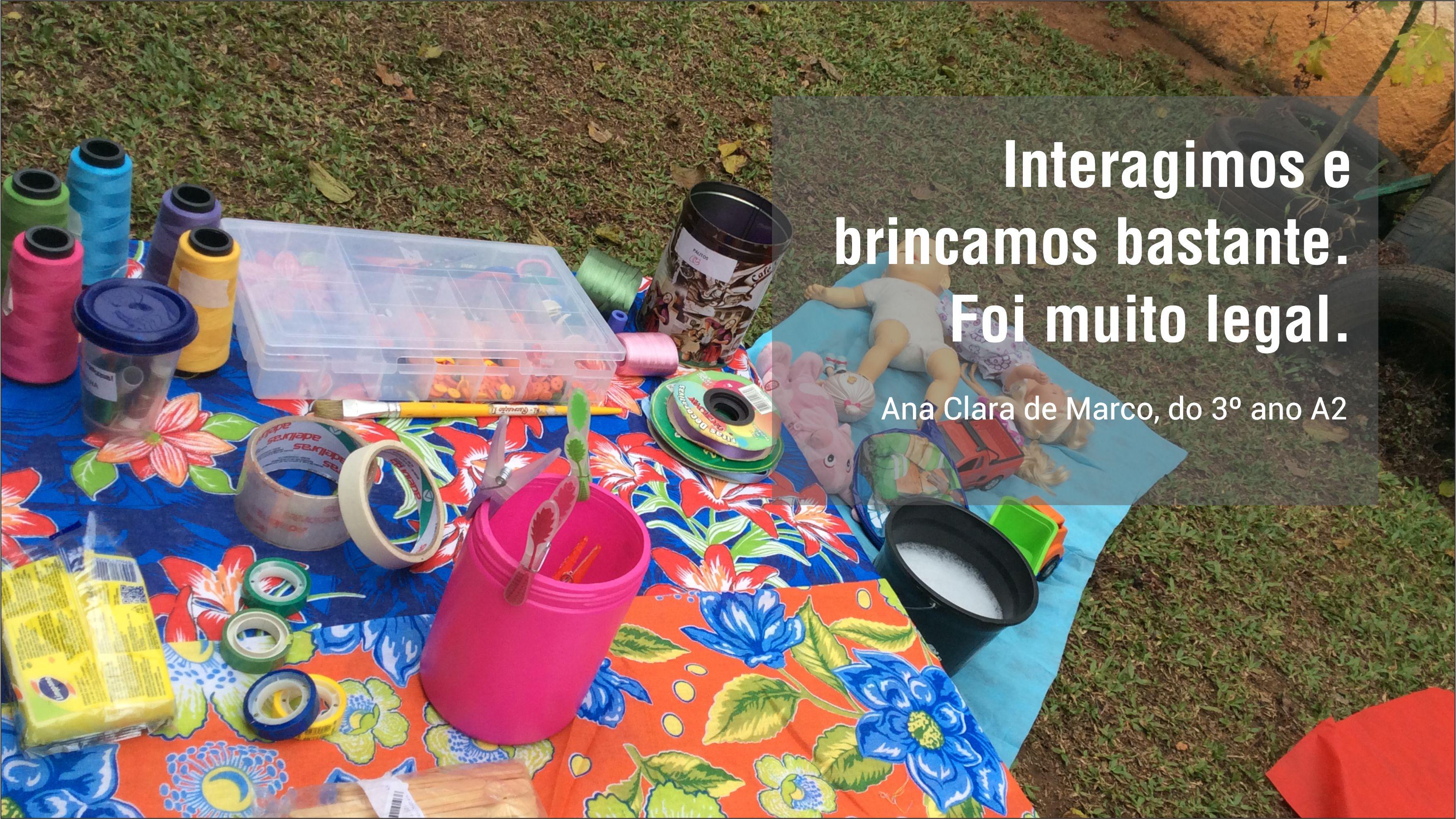 Citação da aluna Ana Clara Machado Integral