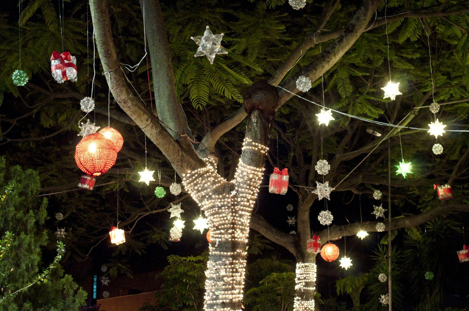 Concurso Decota Natal em família Certus